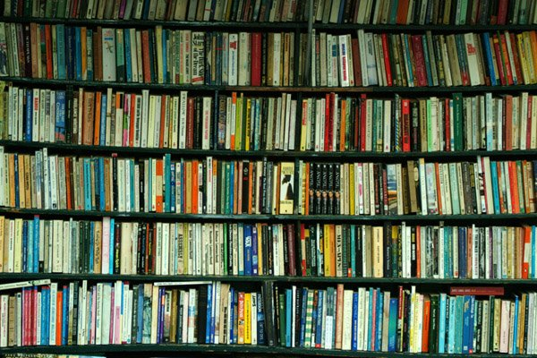 Shelving it – why bookshelves have become outdated and obsolete
